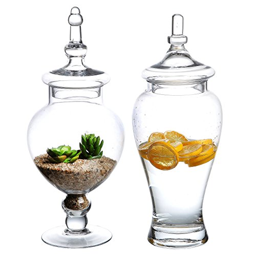 Set of 2 Large Decorative Clear Glass Apothecary Jars / Wedding Centerpieces / Candy Storage Canister - MyGift by MyGift Glass Candy Apothecary Jar