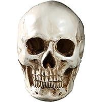 JIUQING cráneo humano decoracion interiores skull calavera adornos para halloween Beige