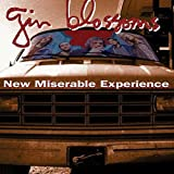 Songtexte von Gin Blossoms - New Miserable Experience