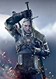 The Witcher 3: Wild Hunt Poster / Affiche