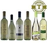 Weißwein Probierpaket Italien trocken (6x0,75l) - VERSANDKOSTENFREI -Chardonnay aus Venezien   Pinot Grigio von Ca´Ernesto   Hugo