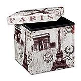 Relaxdays 10019050_366 - Banco taburete con función de Baúl, de cuero sintético, 38 x 38 x 38 cm, carga máxima 300 Kg, se puede almacenar muchas cosas, diseño Paris