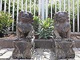 Yajutang - Figura de Piedra (60 cm), diseño de león de Templo