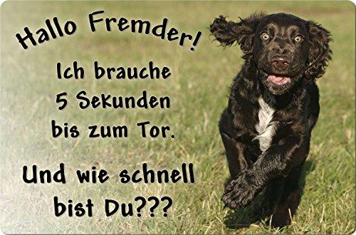 +++ Deutscher WACHTELHUND - Metall WARNSCHILD Schild Hundeschild Sign - DWH 03 T14