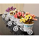 TiedRibbons® Flower Vase Cycle Shape With Flower Bunches(Set Of 4)