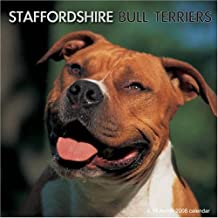 Staffordshire Bull Terriers (Calendrier 2008)