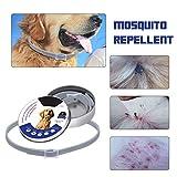 Migvela Collare per Cani Pet Anti Anti-pulci zecche zecche Collari Anti-repulsione per Insetti Protezione Acari Collari Impermeabili Regolabili - Grigio