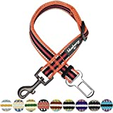 Best Puppia harnais pour chien pour les voitures - Blueberry Pet - Collier martingale à rayures multicolores Review
