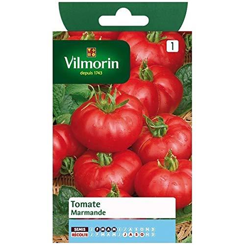 Vilmorin - Beutel Samen Tomate Marmande