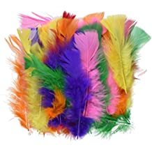Plumas de pavo (a color) - - Playbox grandes - 60 PC - (PBX2470221)