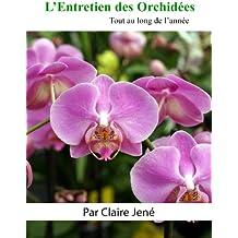 L'Entretien des Orchidées tout au long de l'année