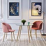 IPOTIUS Mesa de Comedor Redonda de Cristal Mesa de Cocina para 2 4 Personas,Patas de Metal,80X74cm,Transparente