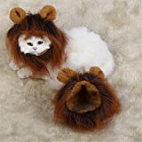 Pet OnlineHalloween Cat Dress Up Kit de cabeza de león cat hat artículos para mascotas