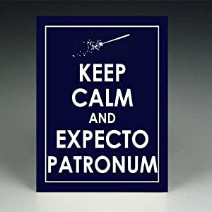 KEEP CALM AND EXPECTO PATRONUM HARRY POTTER WAND METAL PICTURE POSTER PRINT - GREAT GIFT