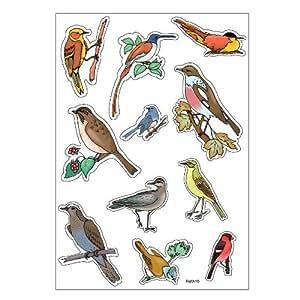 Planche A4 de stickers oiseaux autocollant adhésif scrapbooking - A19