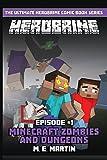 HEROBRINE Episode 1: Minecraft Zombies and Dungeons