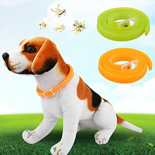 GOTOTOP 2 Farben Ungezieferschutz Kragen Haustier Kragen Zeckenhalsband Schutz gegen Floh Zecken Moskito (Orange)