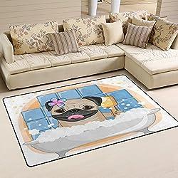 coosun zona de perro carlino alfombra alfombra antideslizante alfombra de suelo (Doormats para salón o dormitorio 60x 39cm, tela, multicolor, 31 x 20 inch