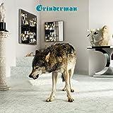 Grinderman /Vol.2