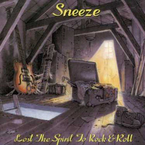 Lost the Spirit to Rock & Roll by Sneeze