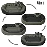 Best Large Dog Beds - BedDog 4in1 Bed for a dog SUNNY XL Review
