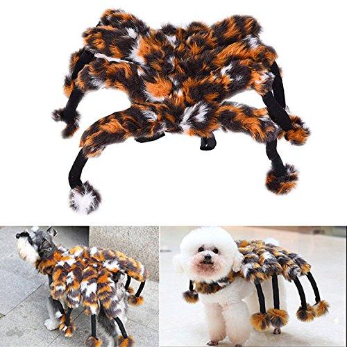 Dress Halloween Fancy Kostüme (Zaote Lustige Haustier Hund Spinne Verklärung Kostüm Haustier Halloween Kleidung Fancy)
