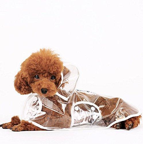 kingwin transparent Puppy reinwear Hund Pudel Haustier RegenJacke Wasserdicht Kleidung Coat (M)