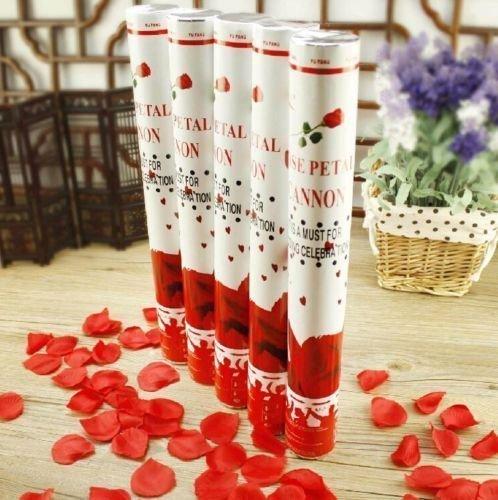10 Rosen Party Popper Konfettikanonen mit Roten Rosenblüten 40cm Konfetti Shooter Rosenregen für Hochzeit,Valentinstag & Geburtstag Konfettibome (Jugend-rot-herz)