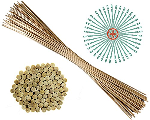 100 Pflanzstäbe aus Qualitäts-Bambus (Ø 6 mm) | inkl. 40 Pflanzenbinder | zu verwenden als Blumenstäbe, Rank- und Pflanzstab | 90 cm lang | extrem stabil Test