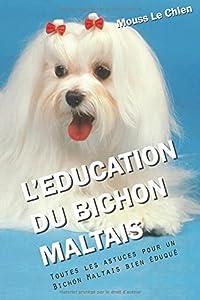 L'EDUCATION DU BICHON MALTAIS: Toutes les astuces pour un Bichon Maltais bien éduqué