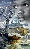 Joey-Das Geheimnis von Swake Valley von Christine Bouzrou