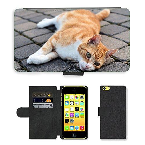 Just Mobile pour Hot Style Téléphone portable étui portefeuille en cuir PU avec fente pour carte//m00140350Hangover chat chat chat domestique/visage/Apple iPhone 5C