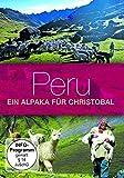 Peru, ein Alpaka für Christoba