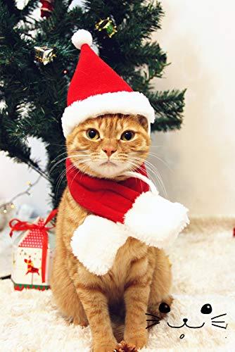 Smoro Mascotas Adornos del día de Navidad Perros Lindos Gorro Bufanda Fibras de acrílico Rojo Gorro de Navidad Bufanda Traje Santa Gato Accesorios para Mascotas