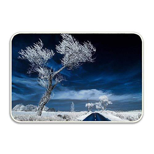 Invierno Snowy Trees Sunrise Felpudo Alfombrillas