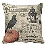 Gotd BIRD ON Pumpkin Halloween Pillows Cover Decorations Decor Halloween Throw Pillow Case Sofa Waist Throw Cushion Cover Home Decor Square 45 x 45cm 18 x 18inch (Beige)