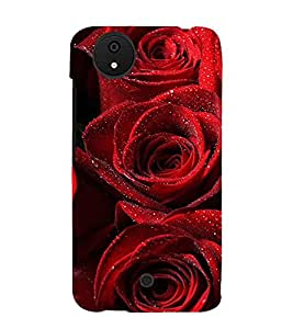 Red Roses 3D Hard Polycarbonate Designer Back Case Cover for Micromax Canvas Android A1 AQ4501 :: Micromax Canvas Android A1