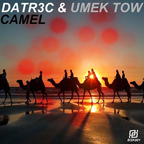 Camel (feat. Umek Tow)