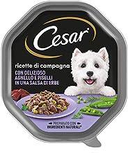 Cesar Ricette di Campagna Cibo per Cane con Delizioso Agnello e Piselli in una salsa di erbe 150 g - 14 Vasche