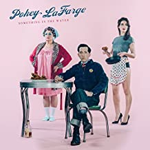 Something In The Water by Pokey LaFarge (2015-02-01)