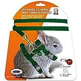 ICA DA1021 Set de Arnés y Correa para Conejos Enanos, Verde