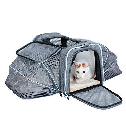 ABISTAB Hundebox faltbar Transportbox Hunde und Katze Transporttasche für Auto- und Flugreisen...