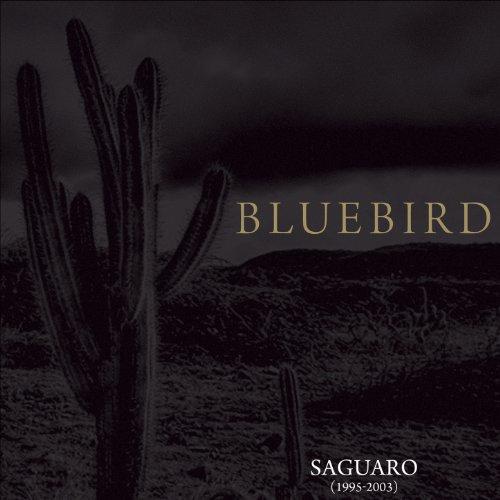 Saguaro (1995-2003) (Tee 2003)