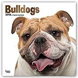 Bulldogs - Bulldoggen 2018 - 18-Monatskalender mit freier DogDays-App: Original BrownTrout-Kalender [Mehrsprachig] [Kalender] (Wall-Kalender)