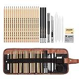 Bleistifte Skizzierstifte Set, AIPLUX 29 Stück Skizzieren und Zeichnen...