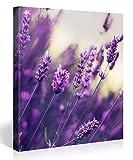 Premium Kunstdruck Wand-Bild – Purple Lavendel – 80x80cm Leinwand-Druck in deutscher Marken-Qualität – Leinwand-Bilder auf Holz-Keilrahmen als moderne Wanddekoration