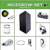 Growset 80 Airontek Aufzucht-Set Energiesparlampe ESL Blüte 125W (85W) Grow Set