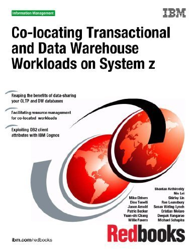 Co-locating Transactional and Data Warehouse Workloads on System Z by IBM Redbooks (2010) Paperback