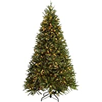 WeRChristmas Pre-Lit Regal Spruce Multi-Function Christmas Tree, 2.1 m - 7 feet with 450-LED, Green