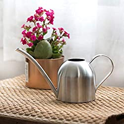 Baiwka Mini arrosoir à Bec Long 500 ML Petit Pot d'arrosage en Acier Inoxydable pour intérieur extérieur, Maison, Bureau, Jardinage, Plantes succulentes